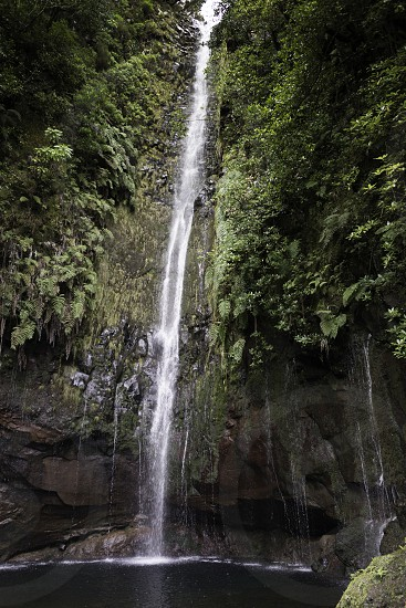 waterfall on madeira island on levada das 25 fontes tracking in wild nature photo