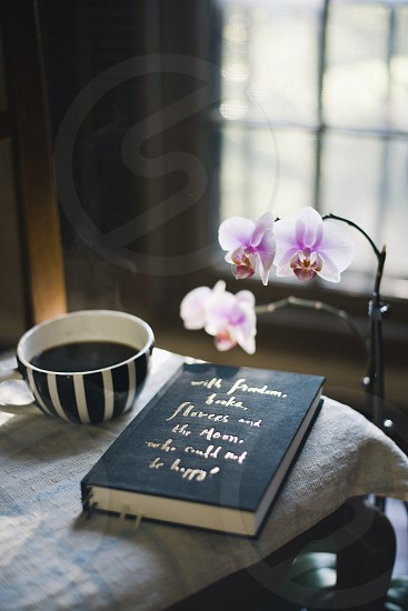 white and purple orchid near table photo