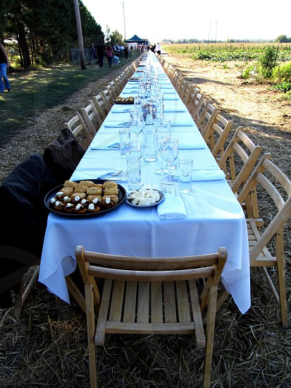 Long table lined up in farm field photo