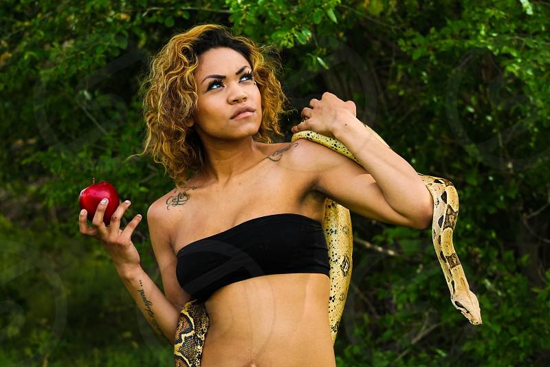Eve theme Snake and apple photo