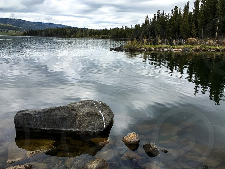 Nature lake springtime photo