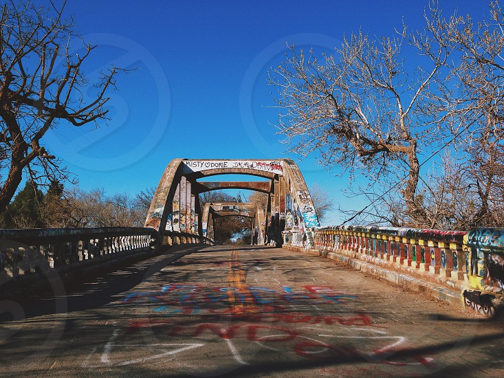 Stevenson (graffiti) Bridge Davis CA photo