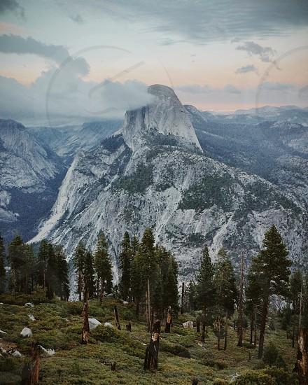 green trees next to white mountain photo