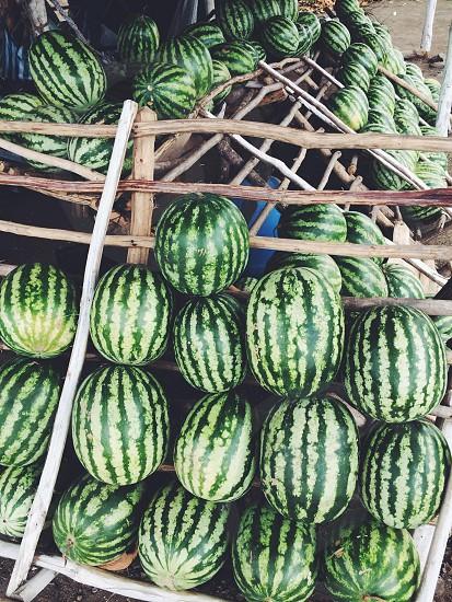 watermelon fruits on display photo