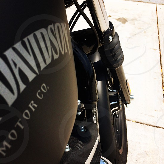 Took out an 883 Sportster for the day. Glorious 300 miles!  photo