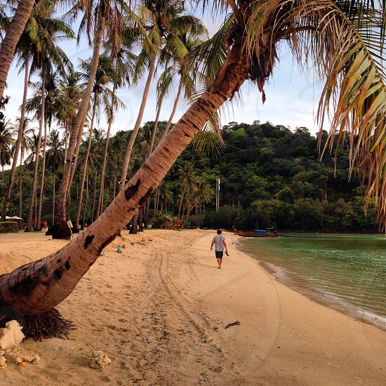 Walking on the Thailand beach with palm trees photo