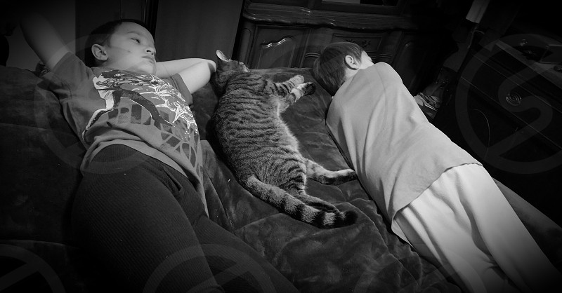 The cat loves his boys. photo