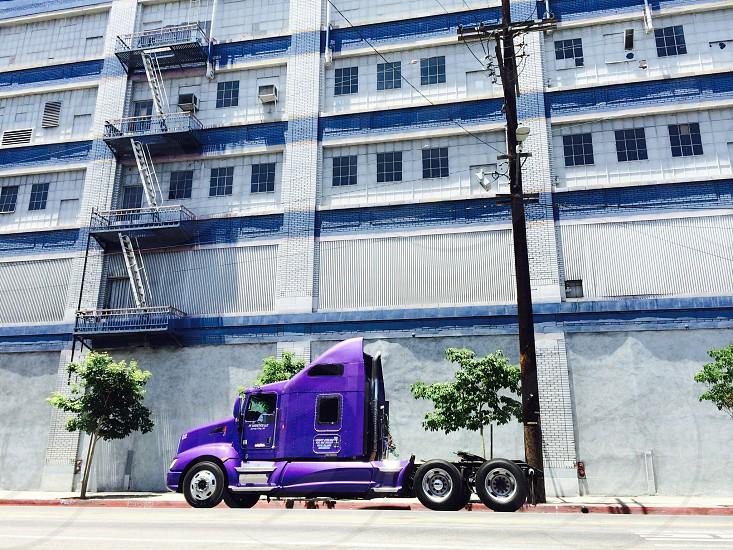Big purple horsepower  photo