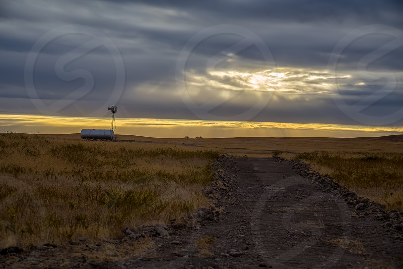 Golden sunset amber waves of grain farmland. photo