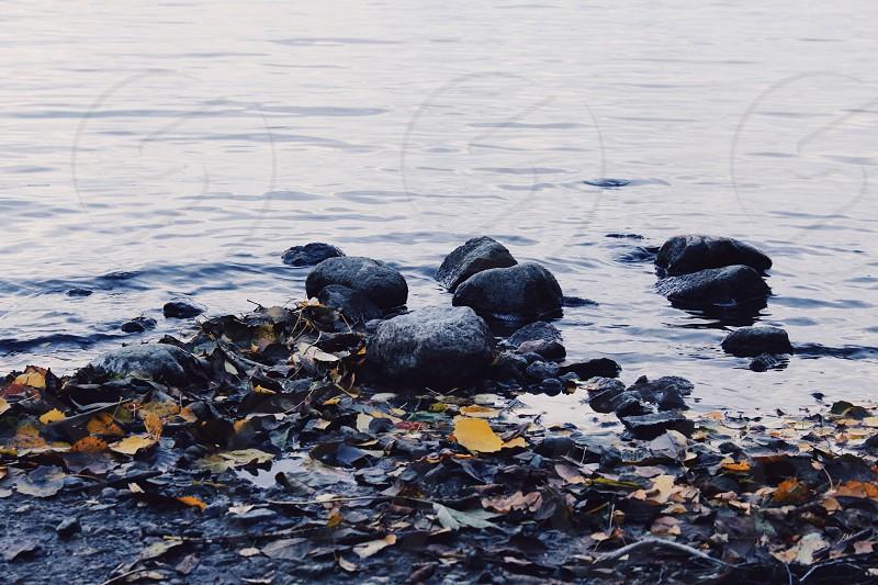 black stones near water  photo