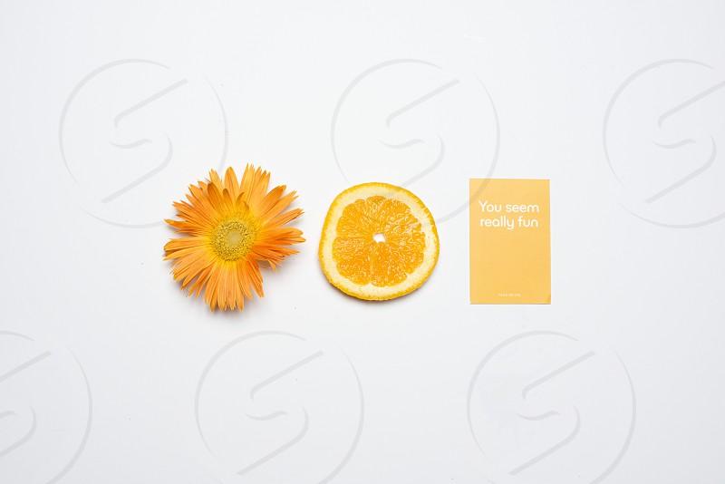 orange fruit beside yellow flower photo