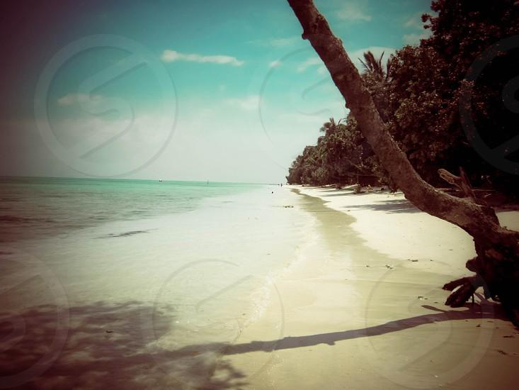 Andaman beaches India photo