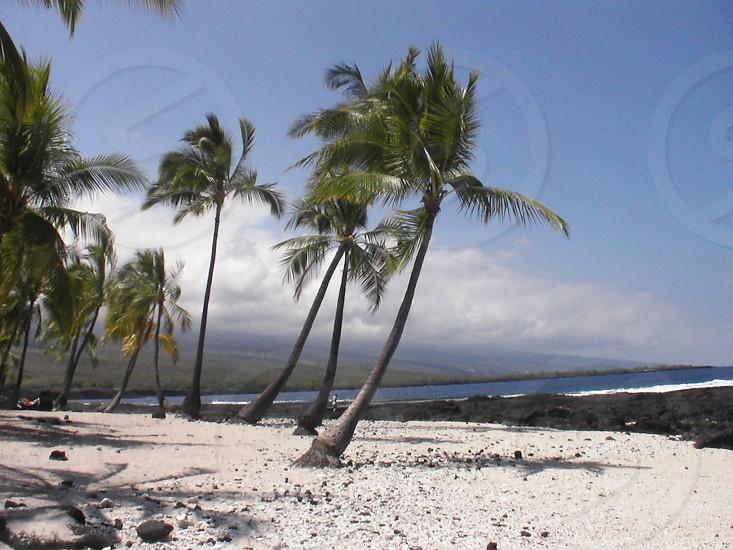 secret big island beach photo