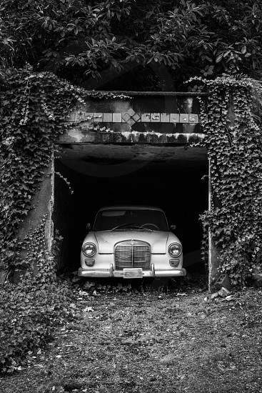 Old car in an overgrown driveway. photo