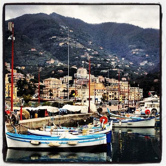 Rapallo Italy boats photo