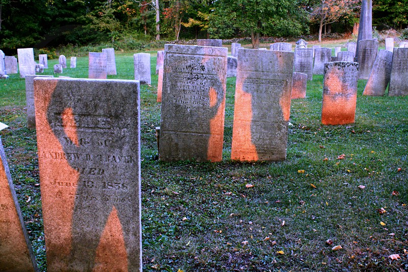cemetery headstones with shadows photo