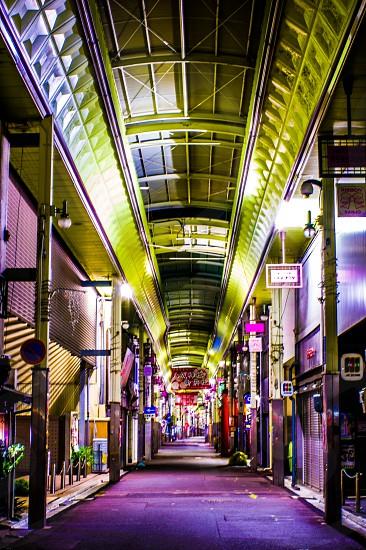京都 photo