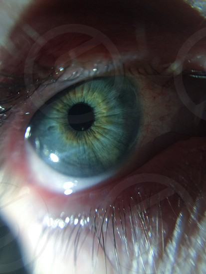 Window to the soul.  photo