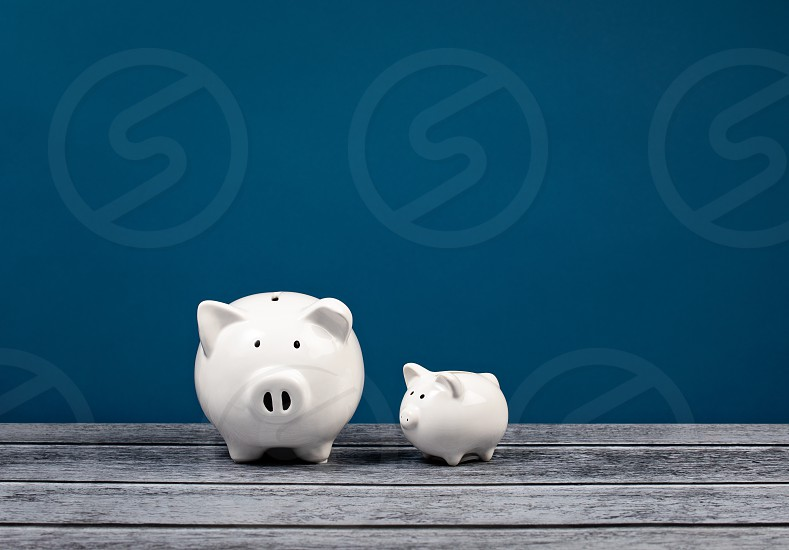 Two cute white Piggy Banks over a blue and grey background. Family finance or Banking Concept. photo