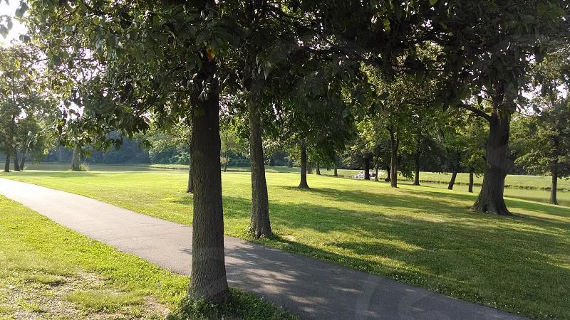 Lake & Park Tree's photo
