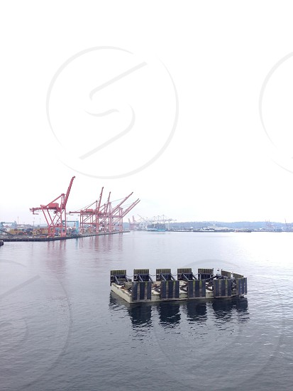 large red cranes next to water photo