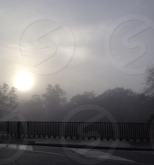 Fog bridge photo