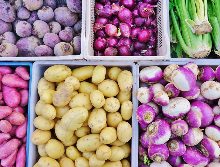 Purple and white root vegetable at the farmers market photo