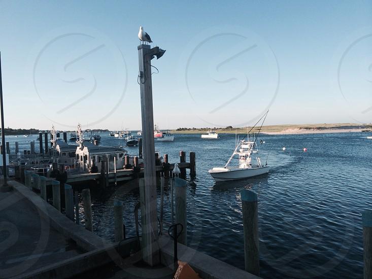view of white yacht photo
