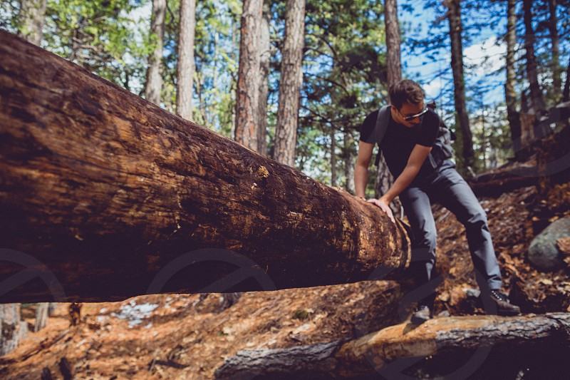 Man climbing off of a log in Yosemite National Park photo