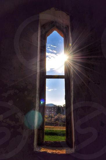 Toward light... photo