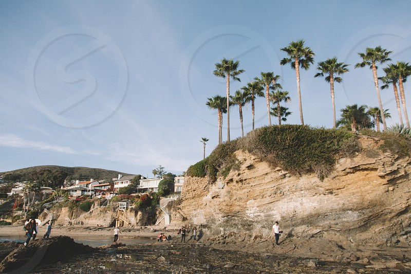 people standing near brown rocky mountain with tall palm trees on top at daytime photo