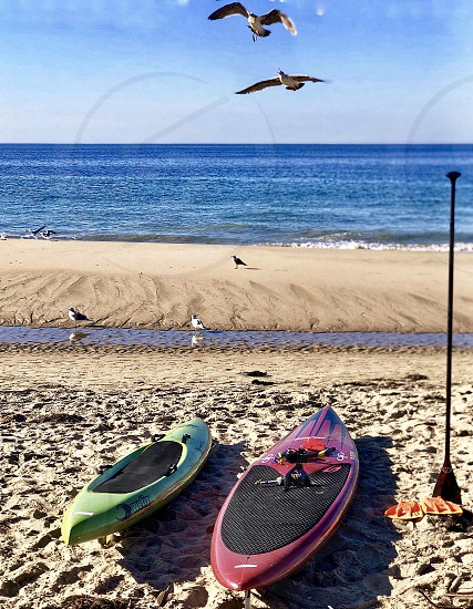Where are you From? Request Kayaking and Paddle Boards at Crystal Cove State Beach and Cottages Laguna Beach California Crystal Cove Cottages Kayak Kayaking Paddle Boarding Sand Beach bursts birds in Flight  photo