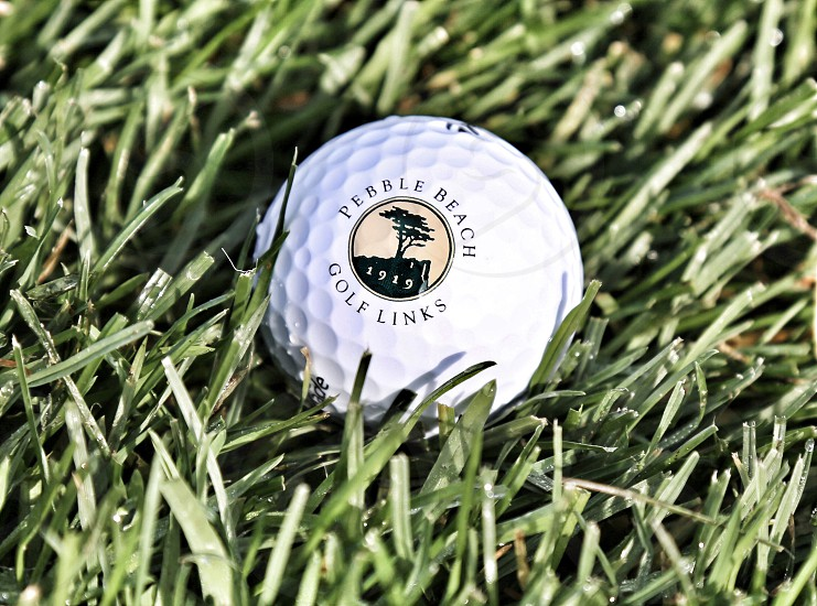 Pebble Beach Golf Ball in Grass photo