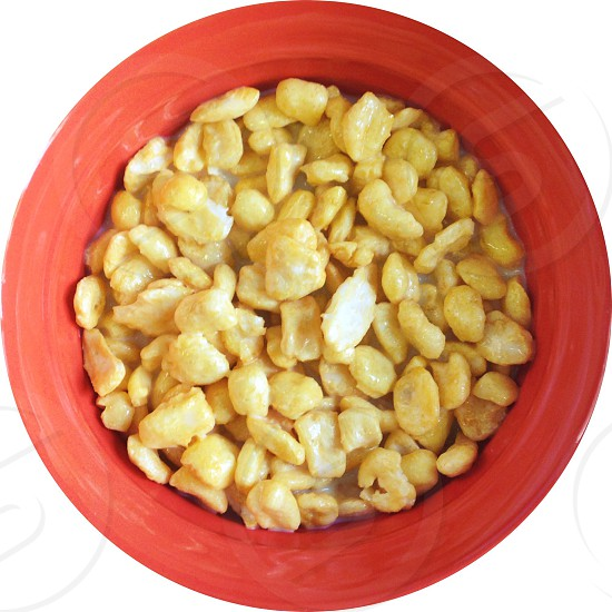 yellow peanuts on cup photo