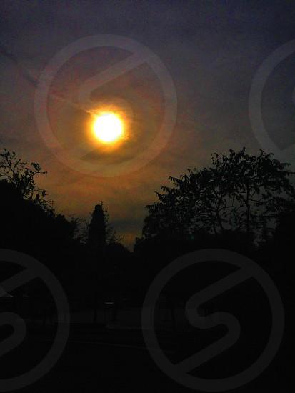 Sol de Medianoche photo