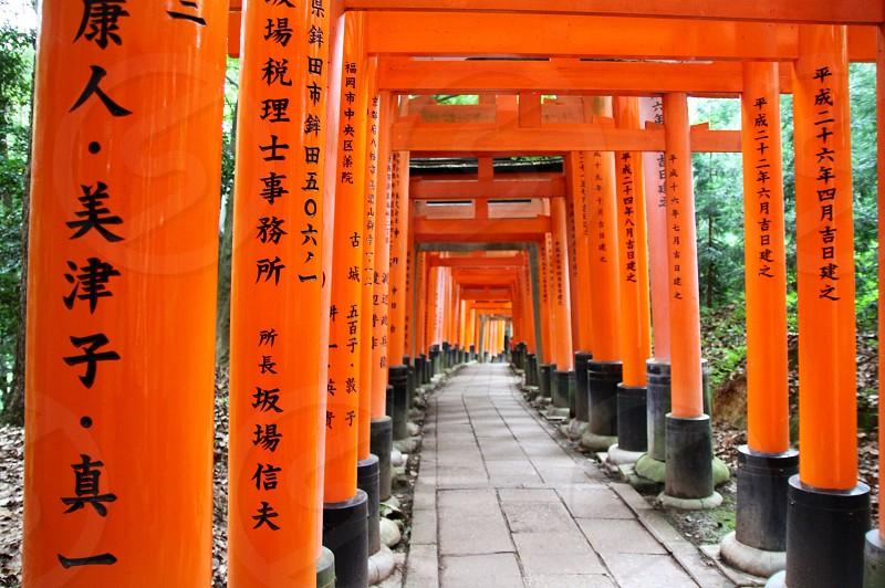 orange and black pillars pathway photo