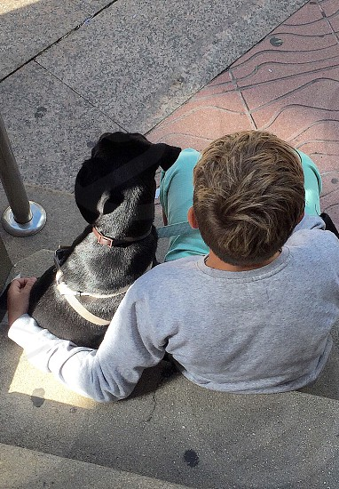 Pet dog animal boy companionship sitting together street street photography  photo