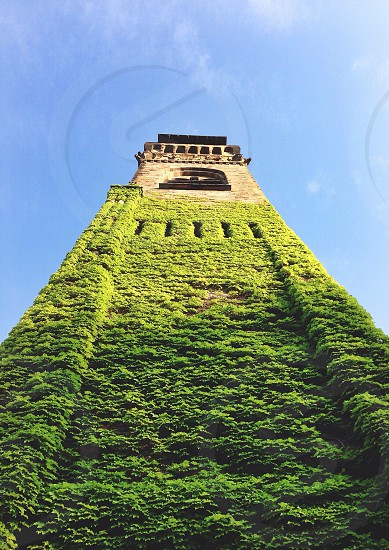 brown concrete tower with green plant photo
