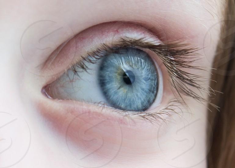 macro blue eye close-up photo
