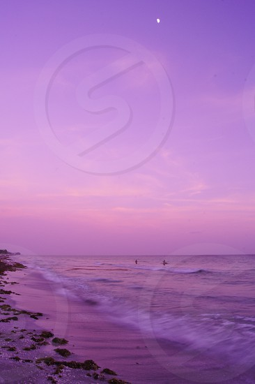 beach ocean waves sunset pink purple summer vacation florida moon summer night summer evening  photo