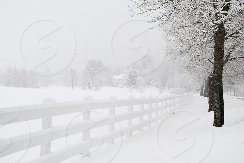 white wooden fence in winter season photo