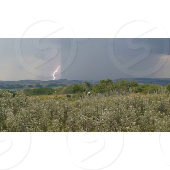 Lightning field grass trees hills sky storm rain photo