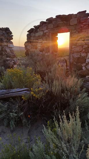 Nevada desert morning photo