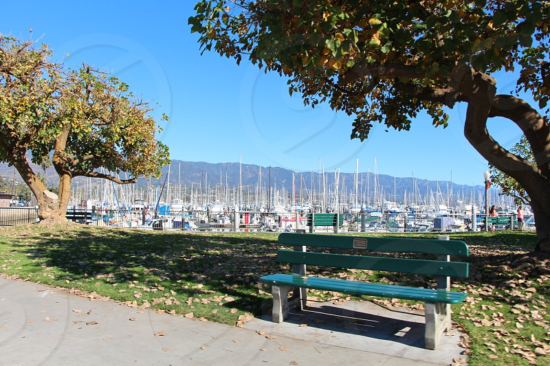 Santa Barbara Harbor photo