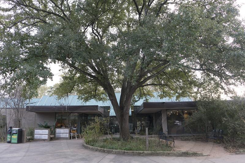 THe visiter center at the Arboretum  photo