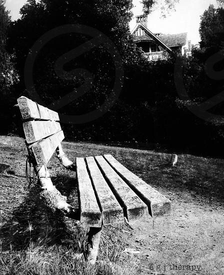 Memorial Bench for Nirvanva frontman Kurt Cobain photo