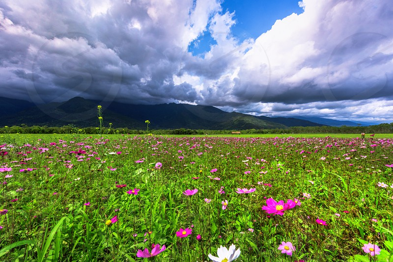 Hualien Valley photo
