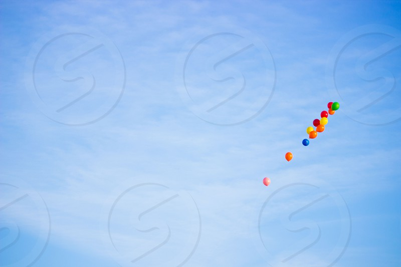 assorted color balloons flying photo