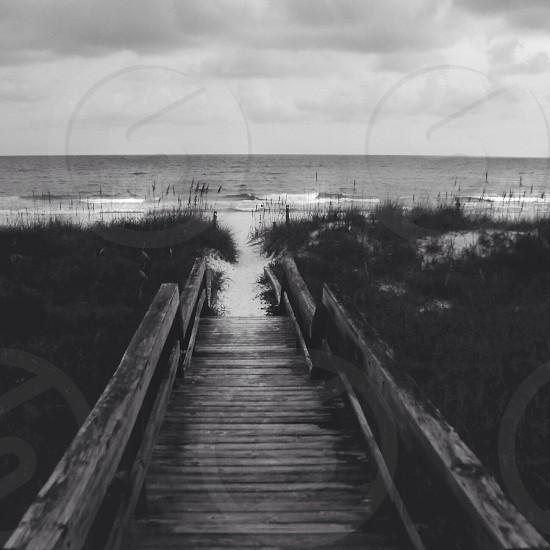 brown wooden bridge straight to the beach photo