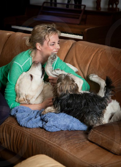 blonde woman plays with her Labrador and Yorkshire terrier dog on brown leather couch photo